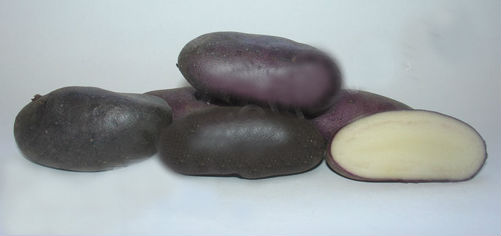 Сорт черная кожура у картофеля